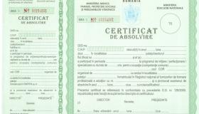 Diploma Academia Top LIne
