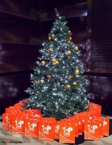 Lansare Mariah Carey Holiday by OPI