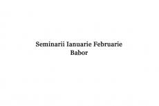 Seminar Babor Diana Mandru Ianuarie Februarie