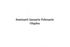 Seminar Olaplex Laura Plesea Ianuarie Februarie